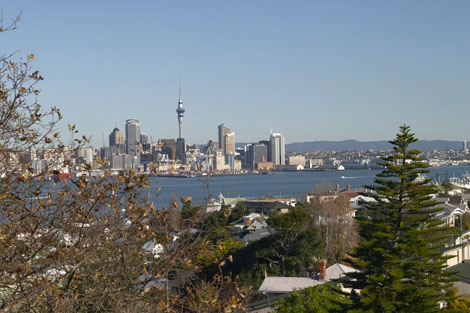 Typical Auckland Shot