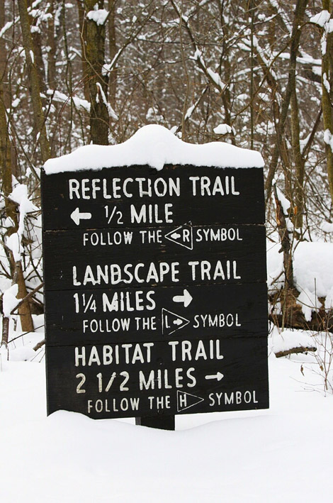 Snow covered sign