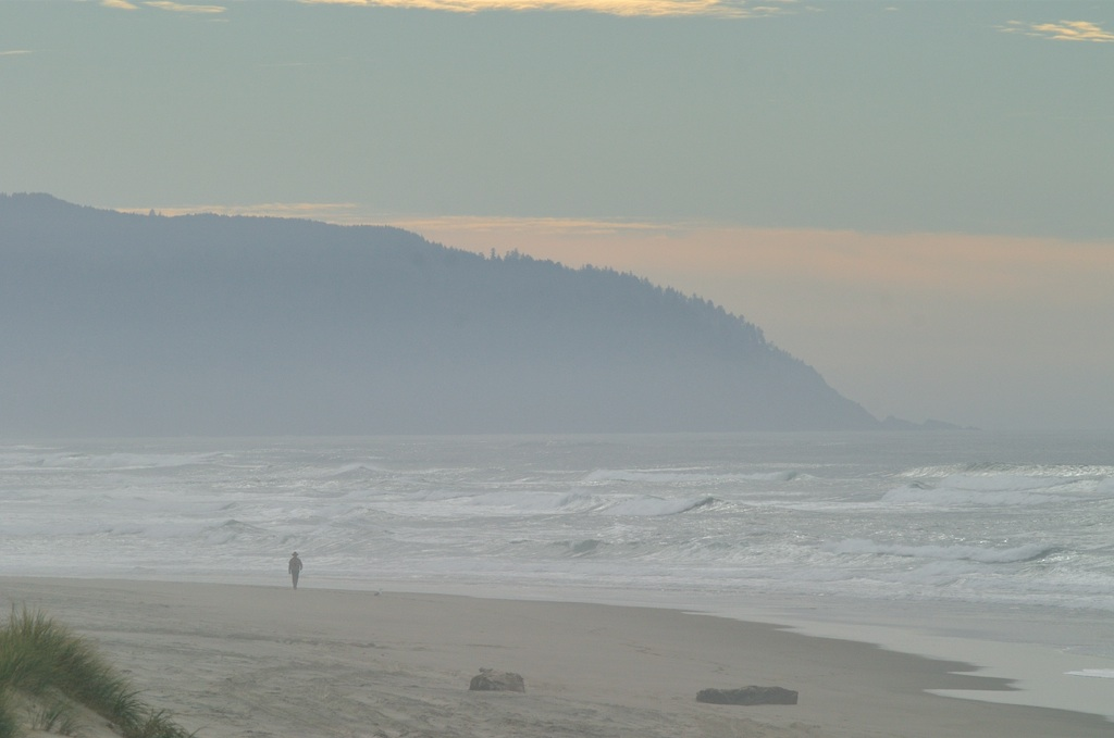 Pacific city fog